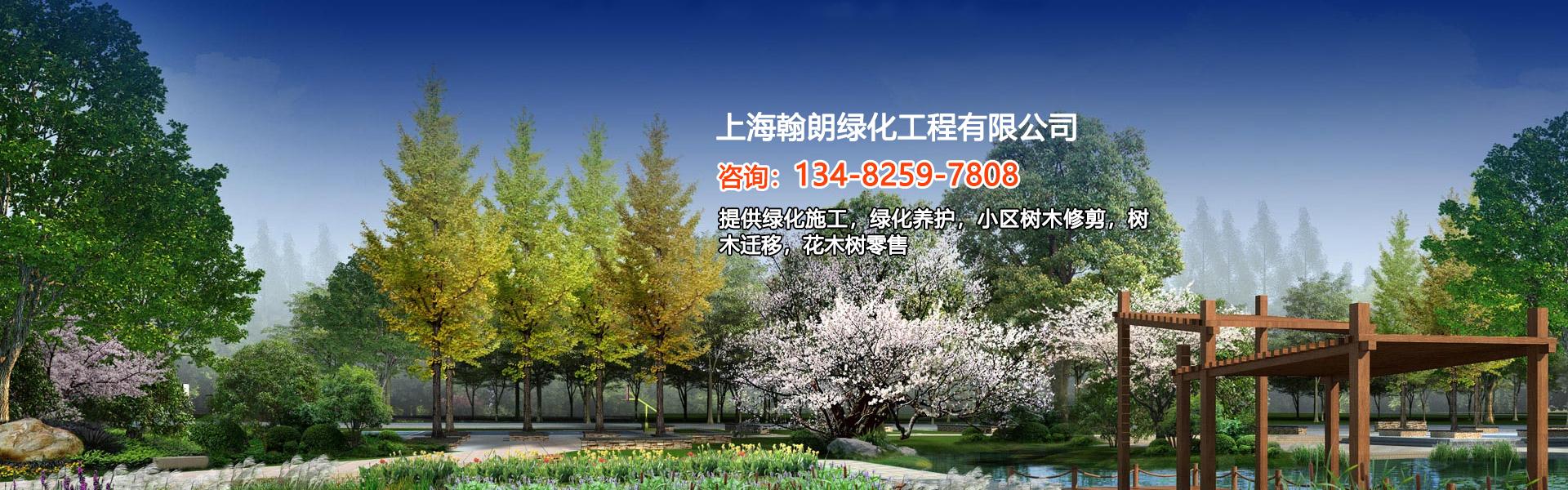 上海树木迁移