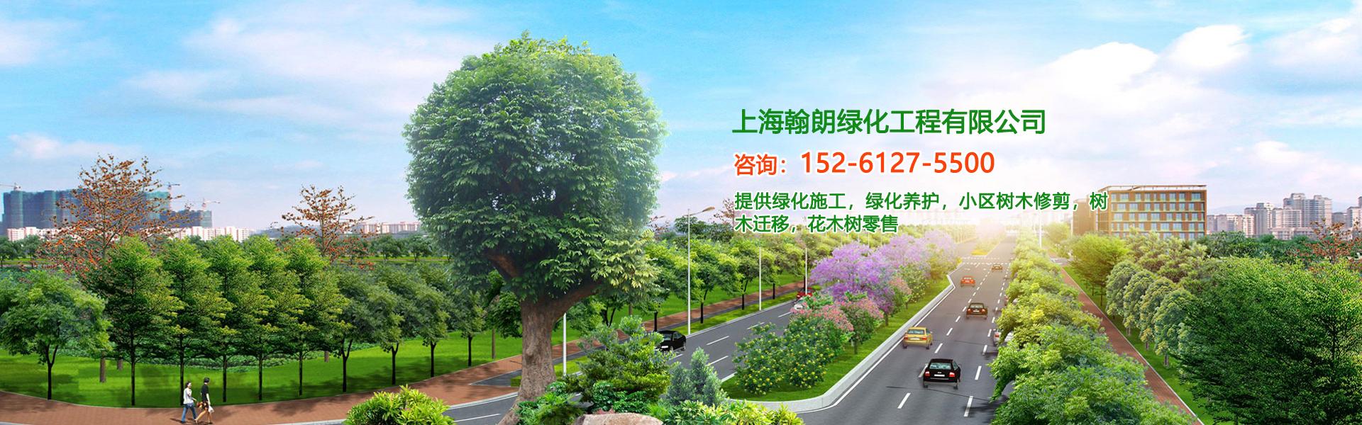 上海绿化施工